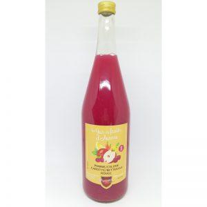 Jus de Pomme Céleri Carotte Betterave Rouge