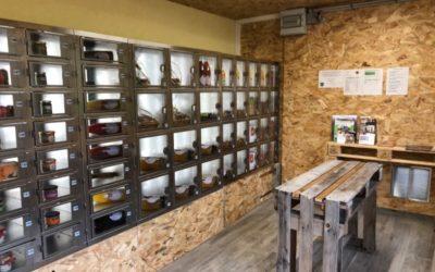 Distributeur automatique à Westhalten